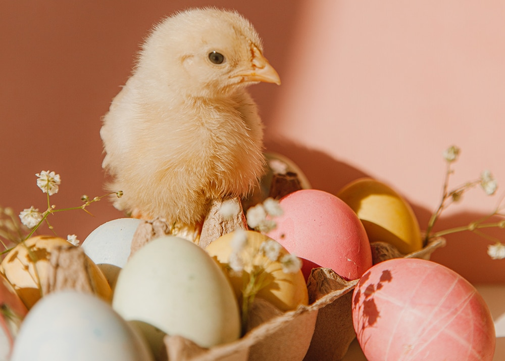 Easter Marketing Tips 1